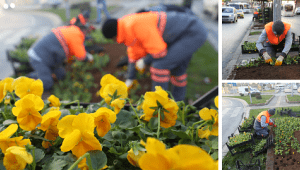 Gaziosmanpaşa' da Kış Bir Başka Güzel Yaşanıyor