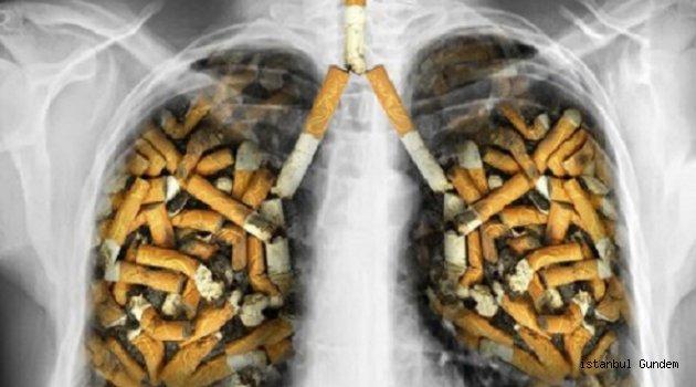 Sigara İnsanlığın Gördüğü En Büyük Felaket