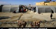 Dünyanın Ortak Sorunu Mülteciler