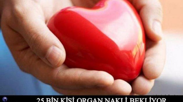Türkiye' de Organ Nakli Bekeleyen Kaç Kişi Var